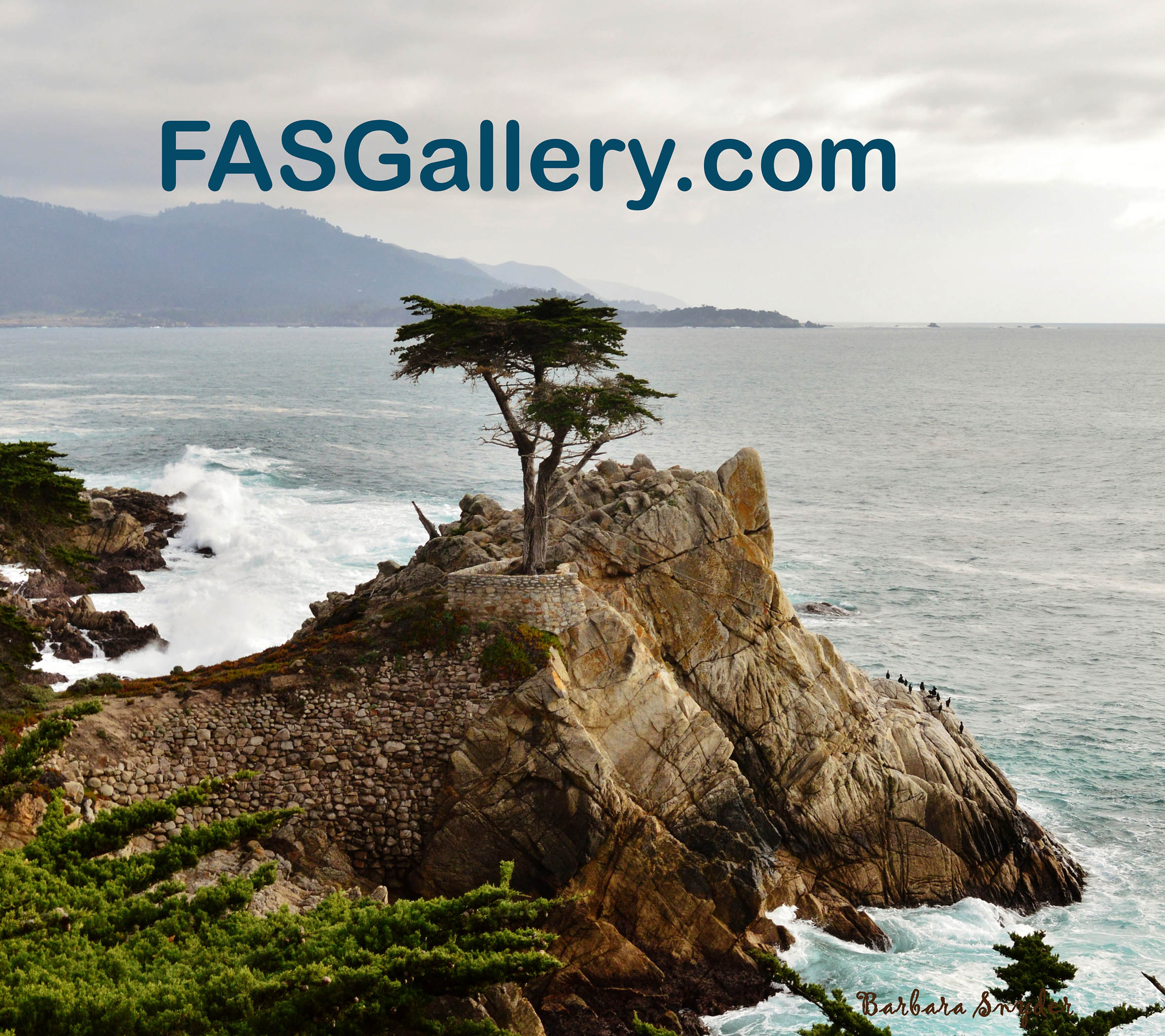 FASGallery