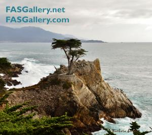 Seascape And Nature Photographer Barbara Snyder Joins FASGallery